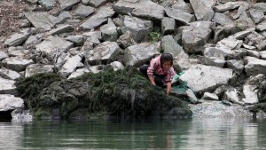 A girl works on the bank of the Yalu River, in Sakchu county, North Phyongan Province, North Korea, June 20, 2015. The North's KCNA news agency said this week that paddies around the country, including the main rice farming regions of Hwanghae and Phyongan provinces, were drying up for lack of rain. Picture taken from China's side of the Yalu. REUTERS/Jacky Chen  - RTX1HDA9